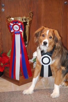 High Point Awards & Ribbons - Ribbons - 519-925-0450