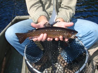 La Pourvoirie Du Lac Oscar - Pourvoiries de chasse et pêche