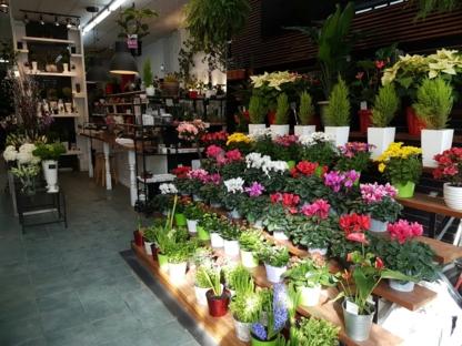 Fleuressence Monkland - Épiceries - 514-488-1500