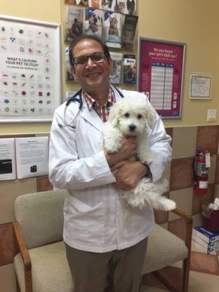 Derry Village Animal Clinic - Veterinarians - 905-670-1414