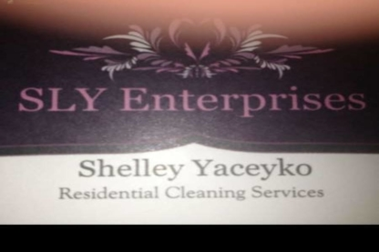 SLY Enterprises Cleaning Services - Dry Cleaners - 780-236-7202