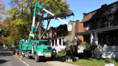 Paysagiste Roger Martel Inc - Service d'entretien d'arbres - 450-679-6770
