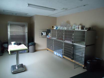Binbrook Animal Hospital - Vétérinaires - 905-692-2693