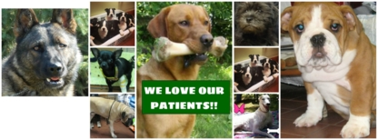 Barrie Animal Hospital - Pet Grooming, Clipping & Washing - 705-737-1900