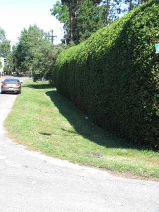 Yvan Beaulieu Hedges & Gardens - Tree Service - 613-878-6242