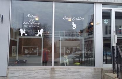 Salon De Toilettage Diament Sur Pattes - Toilettage et tonte d'animaux domestiques