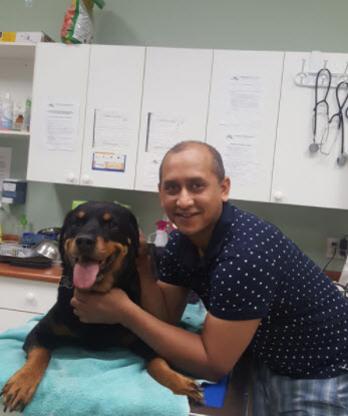 Maillardville Animal Hospital - Health Information & Services