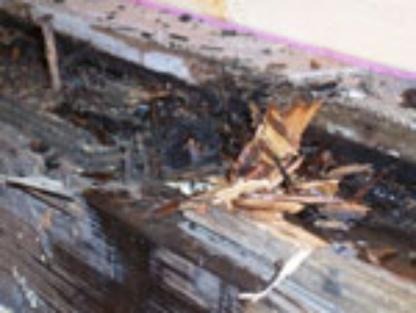 JTD Home Inspections - Inspection de maisons - 519-902-8138