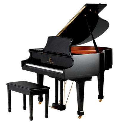 View The Piano Guy's Milton profile