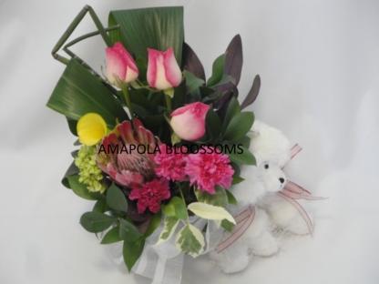 Amapola Blossoms - Florists & Flower Shops - 1-800-663-4468
