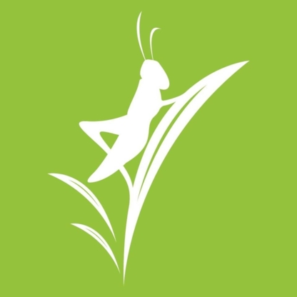 Grasshopper Intuitive Healing Inc