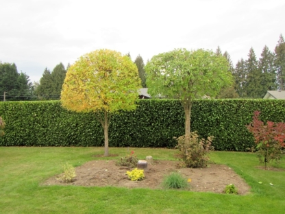 River Valley Arborist & Landscape Services - Tree Service