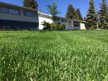 ACE All Seasons Yardcare - Lawn Maintenance - 587-877-9879