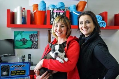 Bam! Dogwash & Pet Boutique - Magasins d'accessoires et de nourriture pour animaux - 416-546-6999