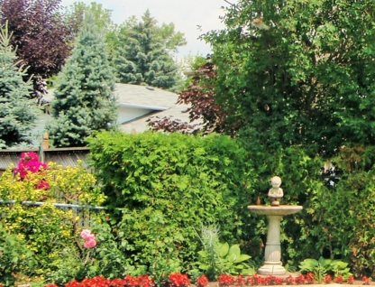 Able's Landscaping Lawn Sod & Snow - Lawn Maintenance - 905-279-3997