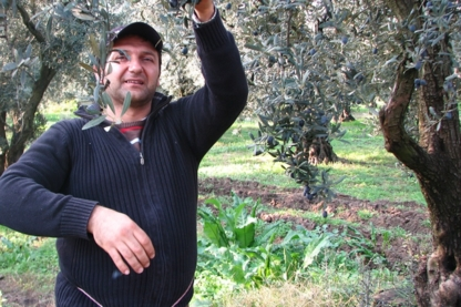 Uzel Olive and Olive Oil - Conseillers en aliments et en boissons