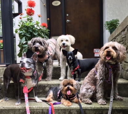 Yaletown Puppy Love - Pet Care Services - 604-868-7787
