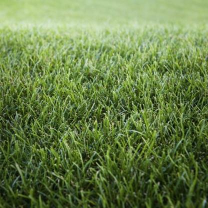 Pelouse Herbu Inc - Lawn Maintenance - 514-355-3303