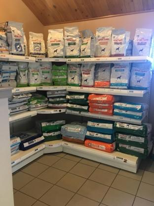 Waterview Animal Hospital - Magasins d'accessoires et de nourriture pour animaux - 506-622-2355