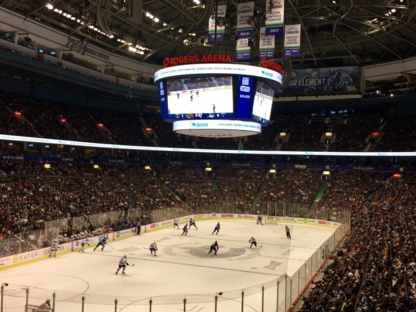 Rogers Arena - Hockey Clubs & Leagues