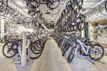 Cactus Bike & Ski - Magasins de vélos