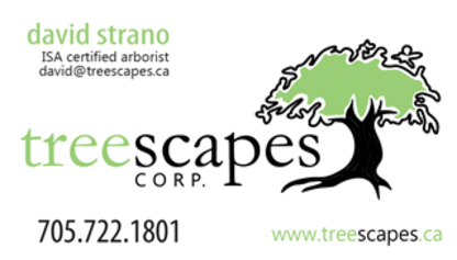 Treescapes Corp - Tree Service - 705-722-1801