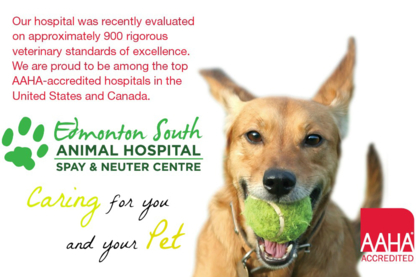Edmonton South Animal Hospital Spay/Neuter Centre - Veterinarians - 780-989-5595
