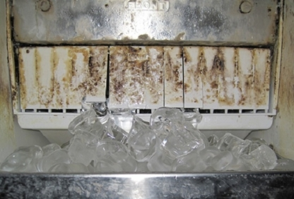 Aardvark Mould Inspections and Remediation - Mould Removal & Control