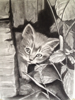 Carol's Art Studio - Art Schools - 780-676-1022