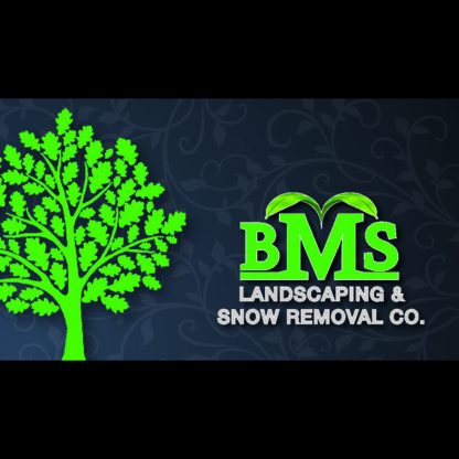 BMS Landscaping & Snow Removal Co - Landscape Contractors & Designers - 416-317-7767