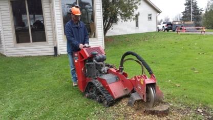 GreenTouch Stump Removal Niagara Region - Tree Service