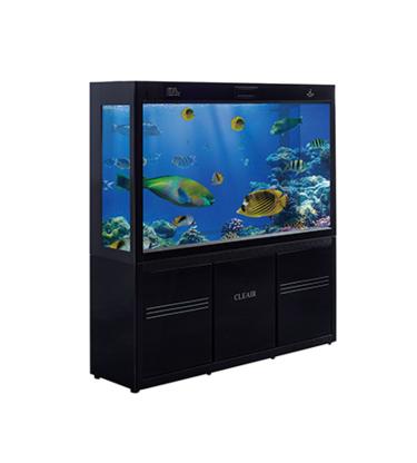 Cleair Aquatics - Aquariums et accessoires - 778-997-9839