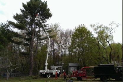 Highland Tree Service Ltd - Landscape Contractors & Designers