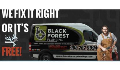 Black Forest Plumbing Inc - Plombiers et entrepreneurs en plomberie - 905-252-9994