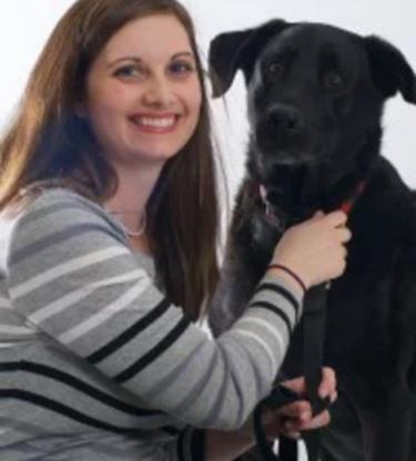 Clinique Vétérinaire d'Aylmer - Vétérinaires