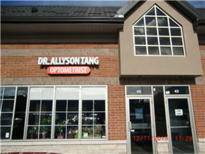 Dr Allyson Tang Optometrist - Contact Lenses - 905-303-8868