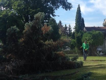 Top Cut Tree Service - Tree Service - 780-432-1236