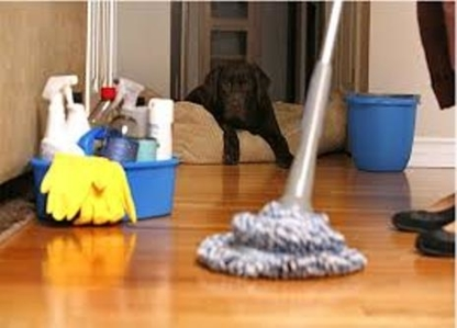 Elsa's Cleaning Services - Commercial, Industrial & Residential Cleaning - 289-923-8100