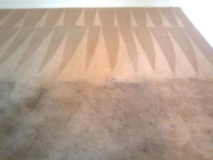 Amna Steam Carpet Cleaning - 519-729-9204