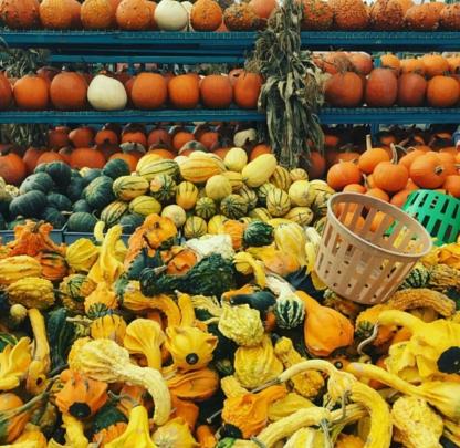 Marché Atwater - Magasins de fruits et légumes - 514-937-7754