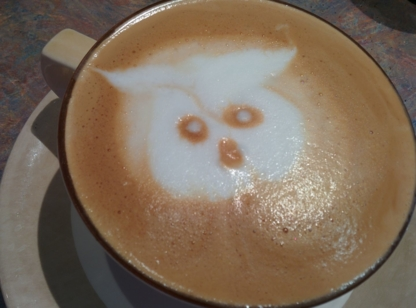 Pacific Coastal Roast Ltd - Coffee Shops