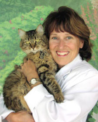 All About Cats Veterinary Clinic - Veterinarians - 604-986-2287