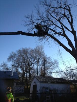 Atlantic Tree Service - Landscape Contractors & Designers - 416-281-5455