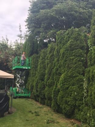 Central Valley Tree & Arborist Services Ltd - Tree Service