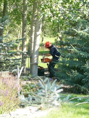 Arbour Crest Tree Services Ltd - 306-242-8733
