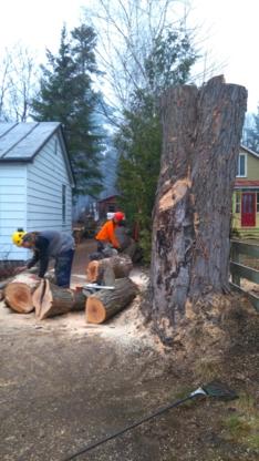 R B Arbo Élagage - Tree Service - 450-944-6066