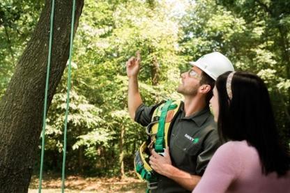 Davey Tree Expert Co - Service d'entretien d'arbres