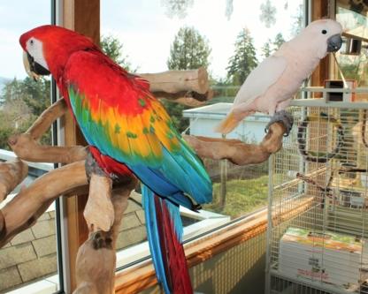 Too Crazy Birdy Hotel - Pet Care Services - 250-722-2201