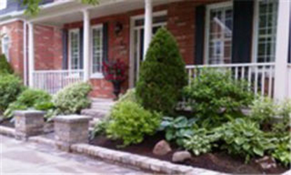 Mr Green Thumb Landscape Services - Lawn Maintenance - 905-472-4973
