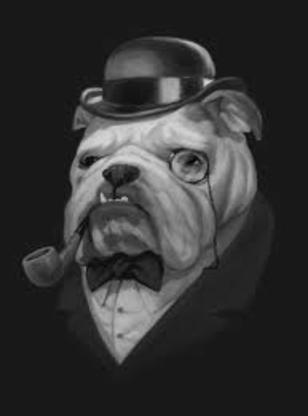 The Bark & Barber - Toilettage et tonte d'animaux domestiques - 905-893-3647